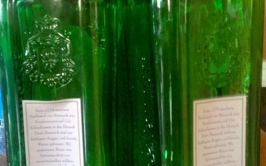Wpływ alkoholu na organizm człowieka, czyli czego oprócz kaca unikniesz pijąc z umiarem - część I